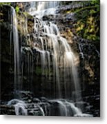 Scaleber Force Metal Print