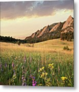 Scenic View Of Meadow And Mountains Metal Print