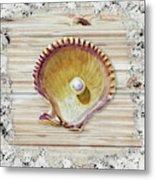 Sea Shell Beach House Rustic Chic Decor IIi Metal Print