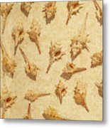 Sea Shell Scroll Metal Print