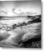 Seashells On The Seashore In Black And White Metal Print