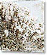 Sepia Snow Metal Print