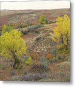 September Trees Reverie Metal Print