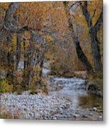Serene Stream In Autumn Metal Print