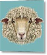 Sheep Portrait. Illustrated Portrait Of Metal Print