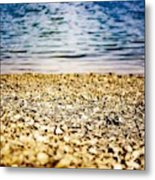Shell Shocke Metal Print