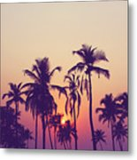 Silhouette Of Palm Trees At Sunset Metal Print