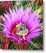 Skipper On Cactus Bloom Metal Print