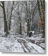 Snow In The Woods Metal Print