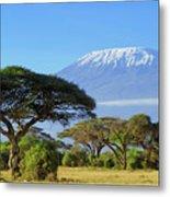 Snow On Top Of Mount Kilimanjaro In Metal Print
