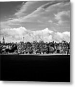 South Park View Metal Print