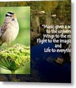 Sparrows Music Metal Print
