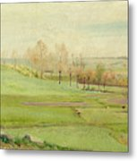 Spring Landscape With Light Green Fields Metal Print