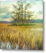 Standing On The Edge Of Evening  Metal Print