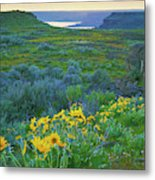 Steamboat Rock 01 Metal Print