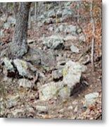 Steep Trails Metal Print