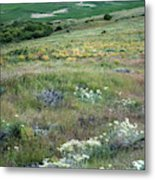 Steptoe Butte View 9276 Metal Print