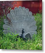 Stone Carved Peacock Metal Print