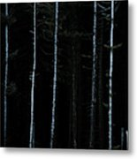 Stunning Fine Art Landscape Image Of Winter Forest Landscape In  Metal Print
