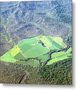 Sugar Canefields Carved Out Of Forest Metal Print