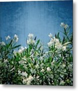 Summer Wildflowers Metal Print