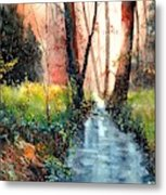 Sunlight Colorful Path Metal Print
