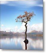 Sunny Afternoon On Loch Lomond Metal Print