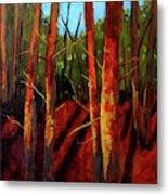 Sunny Forest Landscape Metal Print