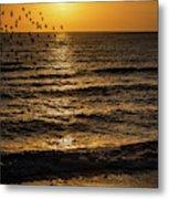 Sunrise Birds Nc Metal Print