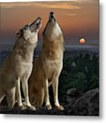 Sunset Harmony Metal Print