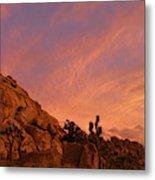 Sunset, Joshua Tree National Park Metal Print