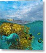 Surf Parrotfish, Damselfish And Basslet Metal Print