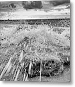 Surf Splash No 2 Metal Print