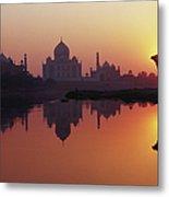 Taj Mahal & Silhouetted Camel & Metal Print