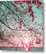 Teal And Fuchsia - Autumn Sunrise Reimagined Metal Print