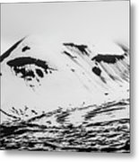 The Arctic Is Crying Metal Print