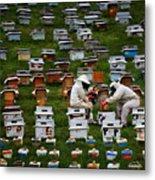 The Beekeepers Metal Print