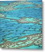 The Big Reef, Whitsunday Islands Metal Print