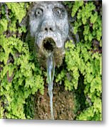 The Hundred Fountains Metal Print