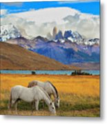 The Landscape In The National Park Metal Print