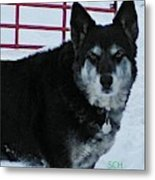 The Magnificent Guardian Of The Gate Metal Print