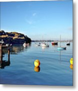 The Mylor Dolphin Metal Print
