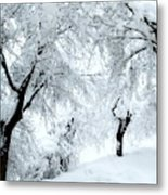 The Pure White Of Snow Metal Print