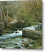 The River Psirzha Metal Print