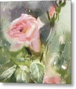 The Rose From A Misty Appalachia Metal Print
