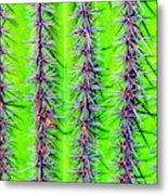 The Spines Of The Cactus Metal Print