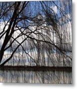 The Veil Of A Tree Metal Print