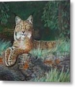 The Wild Cat  Metal Print