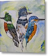 Three Kingfisher Birds - Painting By Ella Metal Print