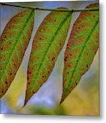 Three Leaves Metal Print